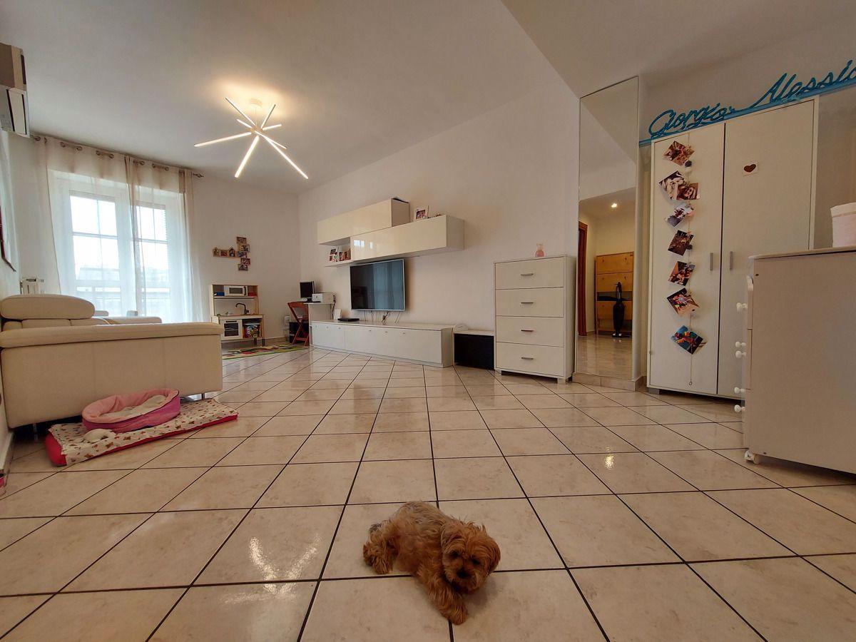 Vendita Bilocale Appartamento Cinisello Balsamo frisia, 5 292061