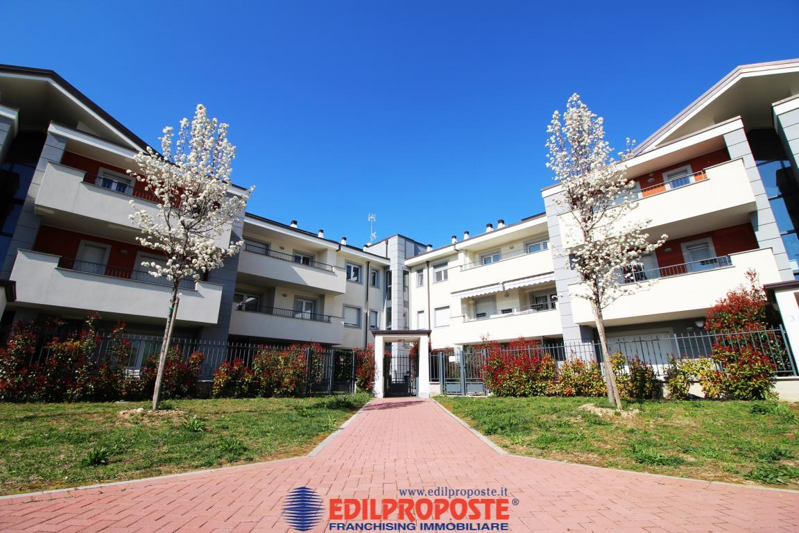 Vendita Attico Appartamento Cesate via Po 6 231810