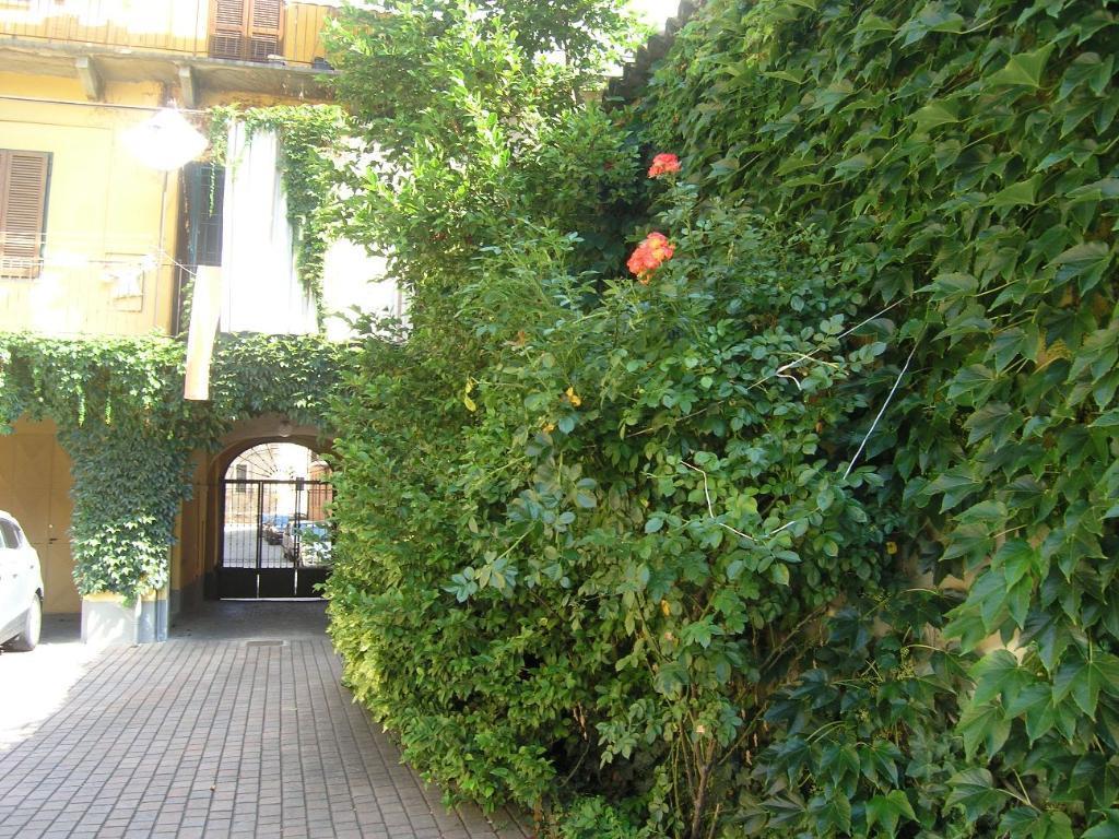 Vendita Trilocale Appartamento Asti via carducci 32 74541